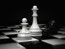 Chess Queen. Chess pieces, white Queen and defeated the black king Stock Images