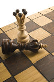 Chess the queen wins victory over the game.  Royalty Free Stock Images