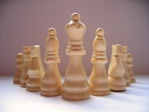 Chess Scene. Photo of wooden chess pieces stock image