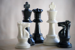 Chess set. Kings, queen,knights Royalty Free Stock Images