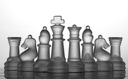 Chess Set Collection: The Best Team Royalty Free Stock Photography