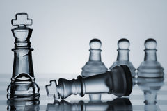 Chess Set Collection: Check Mate Royalty Free Stock Images