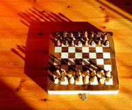 Chess set with shadows Royalty Free Stock Photos