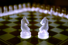 Chess Sets. Two knights Stock Image