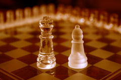 Chess Sets. King and bishop from two different sets Royalty Free Stock Photo