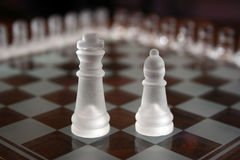 Chess Sets. King and bishop from same set Royalty Free Stock Image