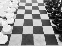 Chess setup Stock Image