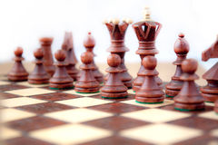 Chess on star. Chess black figure on start the game Royalty Free Stock Images