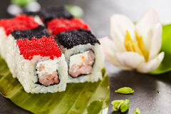 Chess Sushi Roll Stock Image