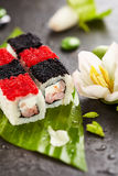 Chess Sushi Roll Royalty Free Stock Image