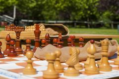 Chess table in park stock images