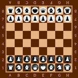 Chess. Table game. Set of black and white figures. Brown checkered board. Vector Image Royalty Free Stock Photos