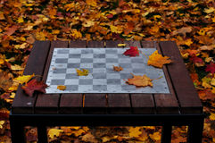Chess table in the park Stock Images