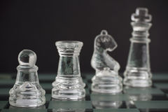 Chess team. On the chessboard Royalty Free Stock Photos