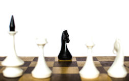 Chess. Traditional board game of chess Stock Photography