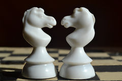 Chess. Two white chess pieces on a chess board, the horses Royalty Free Stock Photography