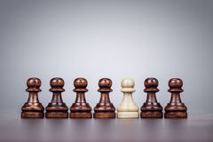 Chess uniqueness concept over grey background. Chess uniqueness concept on the grey background Stock Photos