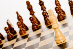 Chess on white Royalty Free Stock Photos