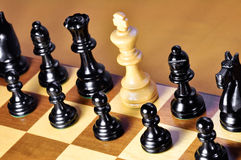 Chess. White king. Royalty Free Stock Image