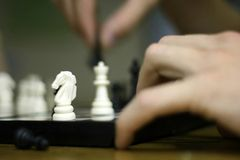 Chess - white knight Royalty Free Stock Images