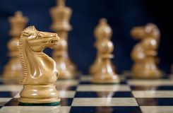 Chess White Knight Piece on Chess Board stock photos