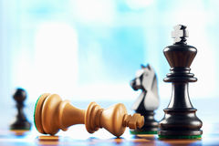 Chess winner defeats white king. Abstract blue background royalty free stock photos