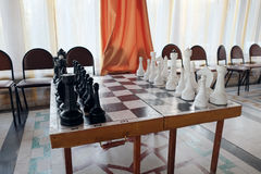 Chessboard with the chess Royalty Free Stock Photos