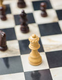 Chessboard with chess pieces Royalty Free Stock Photo