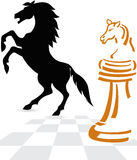 Chessboard concept Royalty Free Stock Image