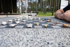 Chessboard dla szachowych lub plenerowych warcab?w w parku zdjęcie royalty free