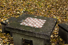Chessboard in park Royalty Free Stock Image