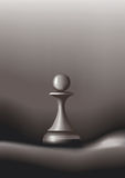 Chessman Royalty Free Stock Image