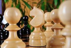 Chessman horse closeup. Stock Photos