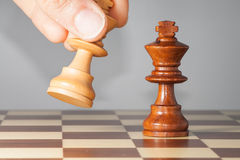 Chessmate Royalty Free Stock Photos