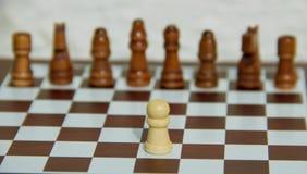 Chessmates photographie stock libre de droits