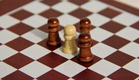 Chessmates Stock Photography