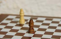 Chessmates Royalty Free Stock Image