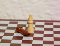 Chessmates Royalty Free Stock Photography