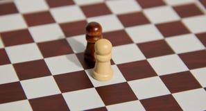 Chessmates Stock Images