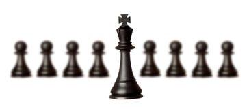Chessmen изолированные на белизне Стоковые Изображения RF