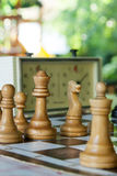 Chessmen и часы на доске Стоковые Изображения RF