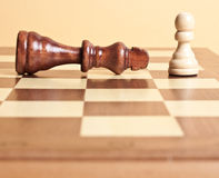 Chessmen Royalty Free Stock Photography
