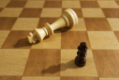 Chessmen on a chess board. Royalty Free Stock Photos