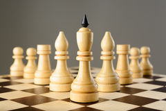 Chessmen King, elephants, rooks and pawns are wedge Stock Photos