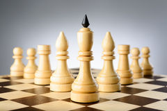 Chessmen King, elephants, rooks and pawns are wedge Royalty Free Stock Photos