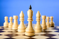 Chessmen King, elephants, rooks and pawns are wedge Stock Image