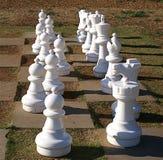 Chessmen on Lawn Chessboard Stock Image