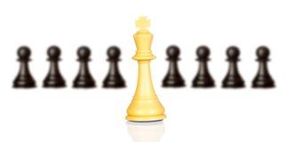 Chessmen som isoleras på vit Arkivbild