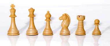 Chessmen som isoleras på vit. Fotografering för Bildbyråer