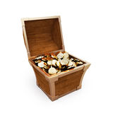 Chest with gold coins Stock Image